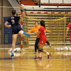 team-handball-auburn